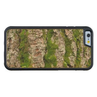 Mossy Pine Tree Bark Carved® Maple iPhone 6 Bumper Case