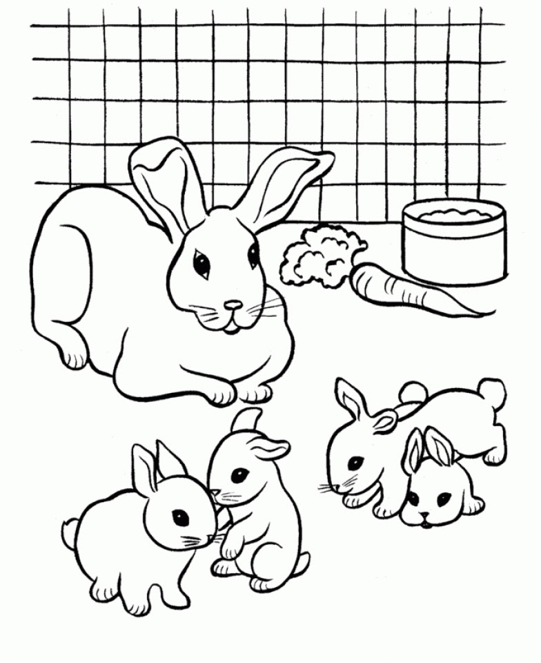 Get This Easy Printable Rabbit Coloring Pages for Children ...