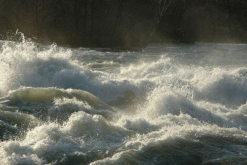 Rapids (flickr: amerune)