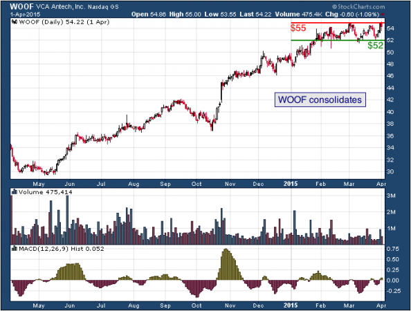 1-year chart of VCA (Nasdaq: WOOF)