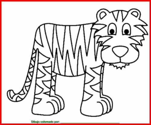 Imagenesparacolorearwebsite Dibujos De Animales Viviparos Para