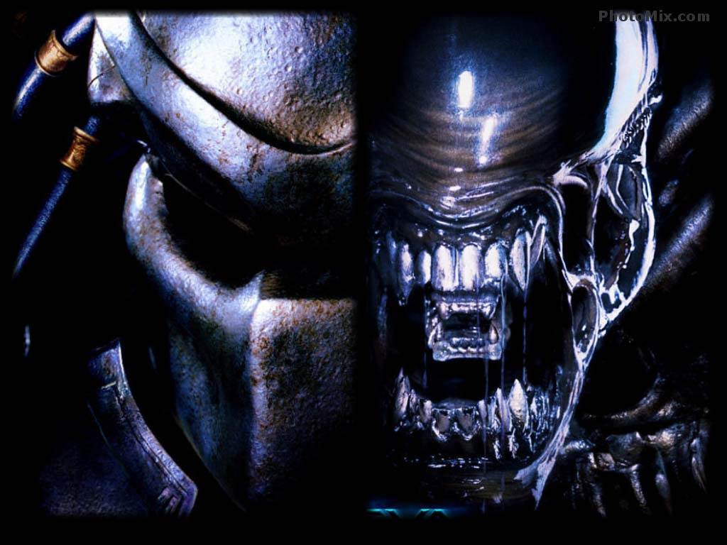Alien Vs Predator Wallpapers Wallpaper Adorable Wallpapers