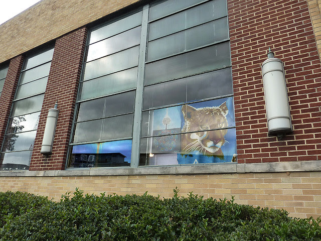 P1020876-2011-12-04-Telephone-Factory-Tour-Show-Big-Cat-in-Window