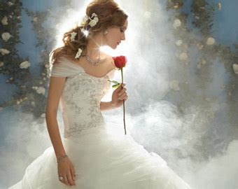 Disney Princess Wedding Dresses and Bridal Gowns from