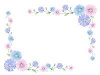 イラスト野の花 枠飾り さくらの部屋