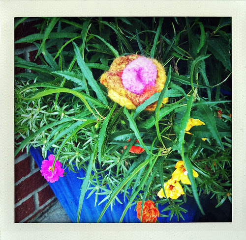 Yarn Bomb Felted Flower  in flower pot