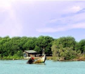 tempat wisata kawasan bogor nirwana house