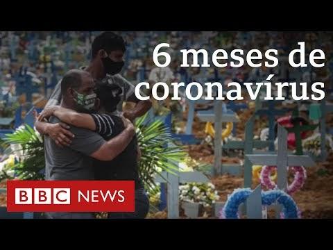 Coronavírus, 6 meses: como a crise engoliu o mundo