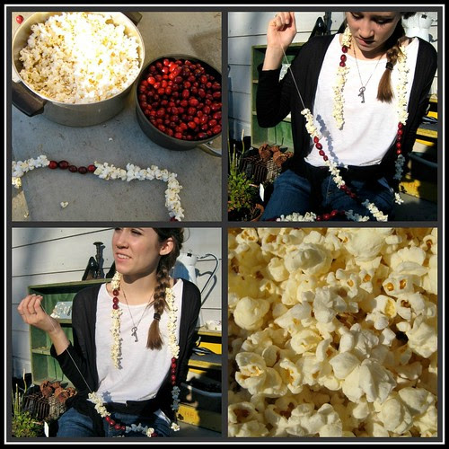 popcorn and cranberries 2011