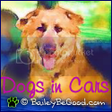 Dogs in Cars at BaileyBeGood.com