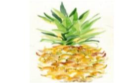 Tuval Boyama Ananas Biletleri