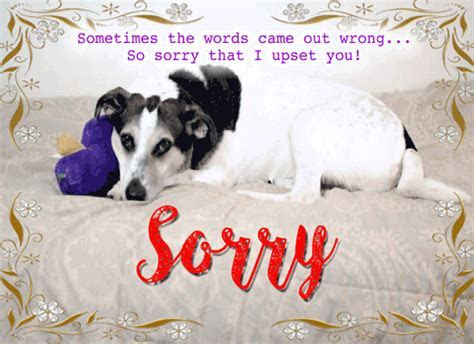 Sorry That I Upset You! Free Sorry eCards, Greeting Cards