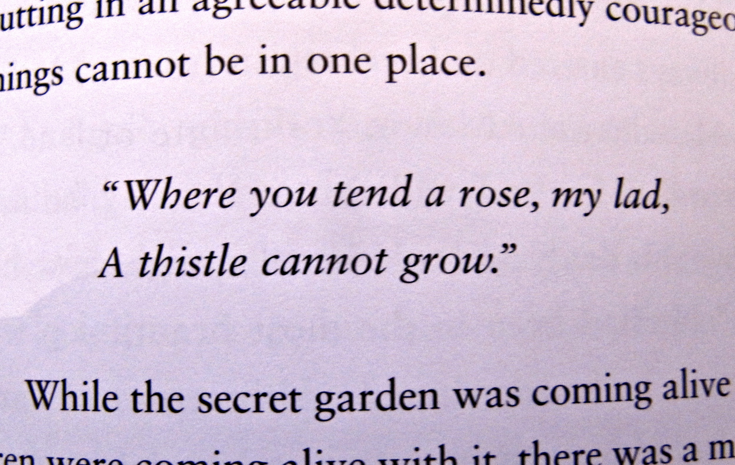 Discussion Points From The Secret Garden