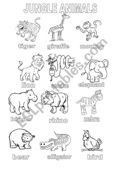 jungle animals coloring sheet esl worksheet  shannoncronin