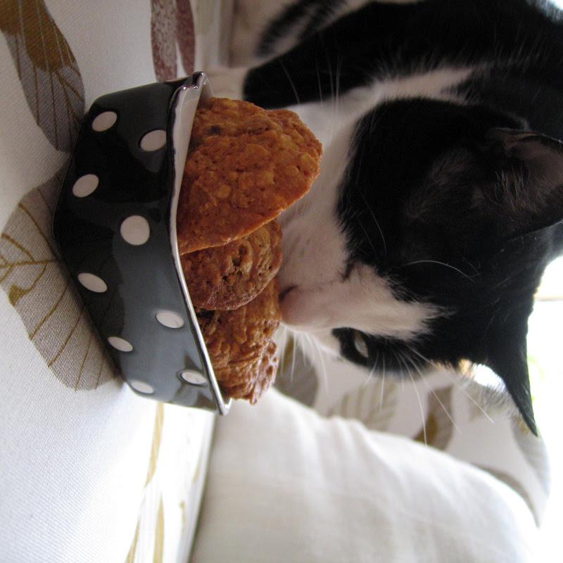 Oat Raisin Almond Cookies