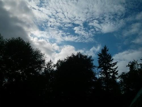 8/3. Skyline