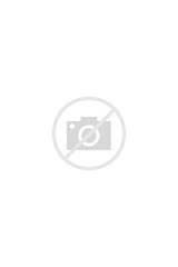 Images of Bike Shoes Vans