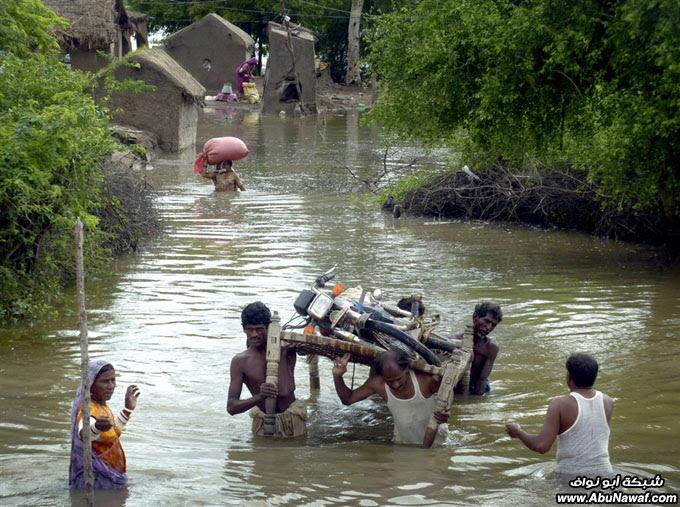 صور حول العالم : خلع أسنان أسد + تايلندي يبيع الطعام في الفيضان .. والمزيد