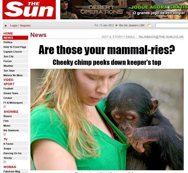 Chimpanzé foi fotografado olhando os seios de turista.  (Foto: Reprodução/The Sun)