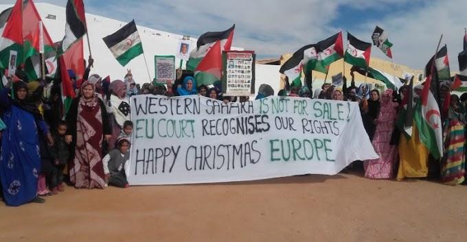 Los recursos naturales del Sáhara Occidental, factor determinante en la resolución del conflicto