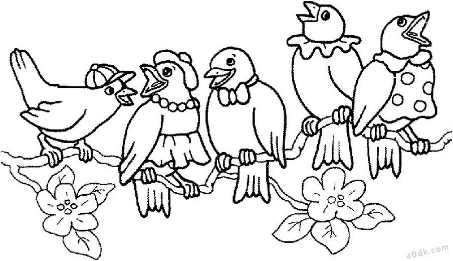 40dkcom Sevimli Kuşlar Boyama Sayfası 581 40dk Eğitim