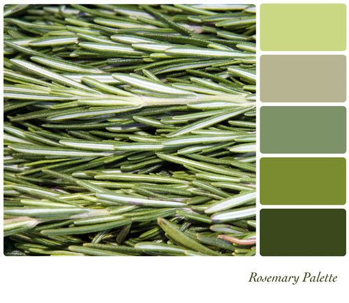 Farmer's Market Green | Rosemary Palette | These nurturing green hues evoke balance and harmony, optimism, and emotional calm -- perfect for a massage treatment room.