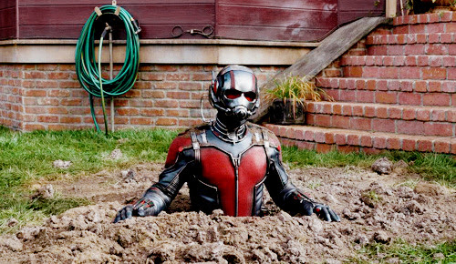 Click for more Ant-Man content, after you read the articles below, of course.