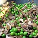 Fresh Green Peas & Mushrooms