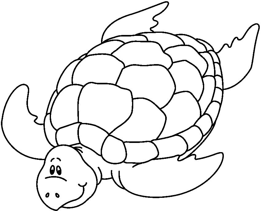 Dibujos Para Colorear De Animales Marinos Az Dibujos Para Colorear