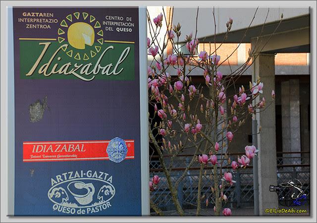 Museo del Queso de Idiazabal (1)