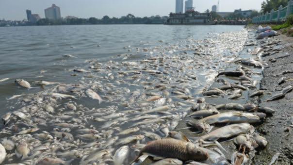 El comportamiento del mar está siendo afectado por el calentamiento global.