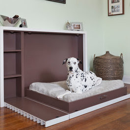 Modern Pet Accessories Design Ideas, Pictures, Remodel and Decor