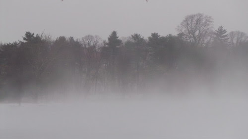 Fog at Jamaica Pond by stevegarfield