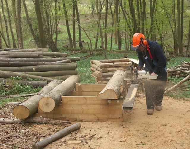 DSC_3926 Logosol sawmill