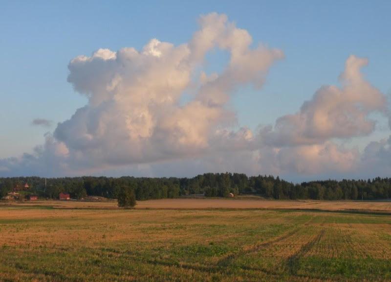 Fälten vid Husby Sjuhundra