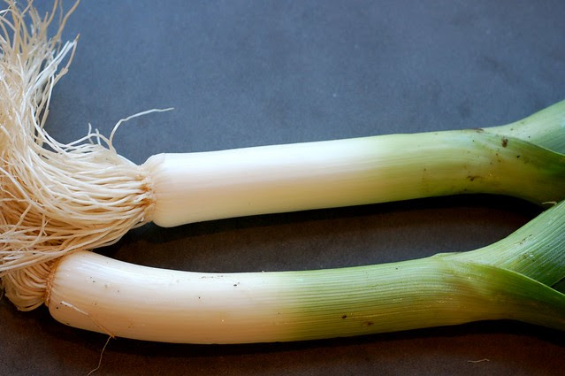Leeks by Eve Fox, Garden of Eating blog, copyright 2011