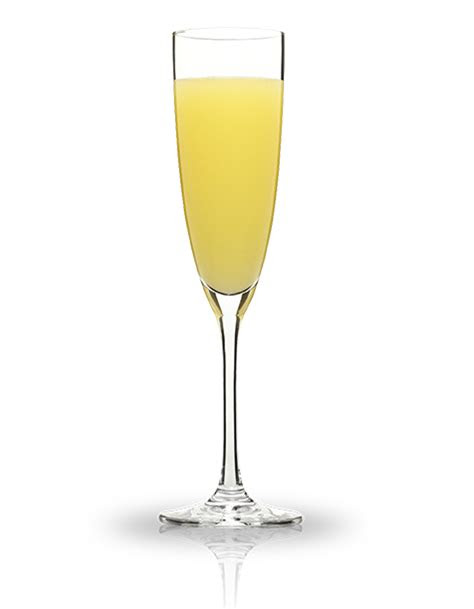 mimosa png clipart  transparent png images