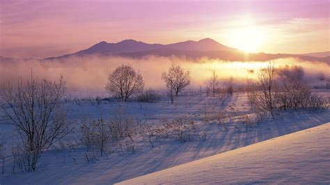 full hd wallpaper haze field tree mountain sunrise iceland