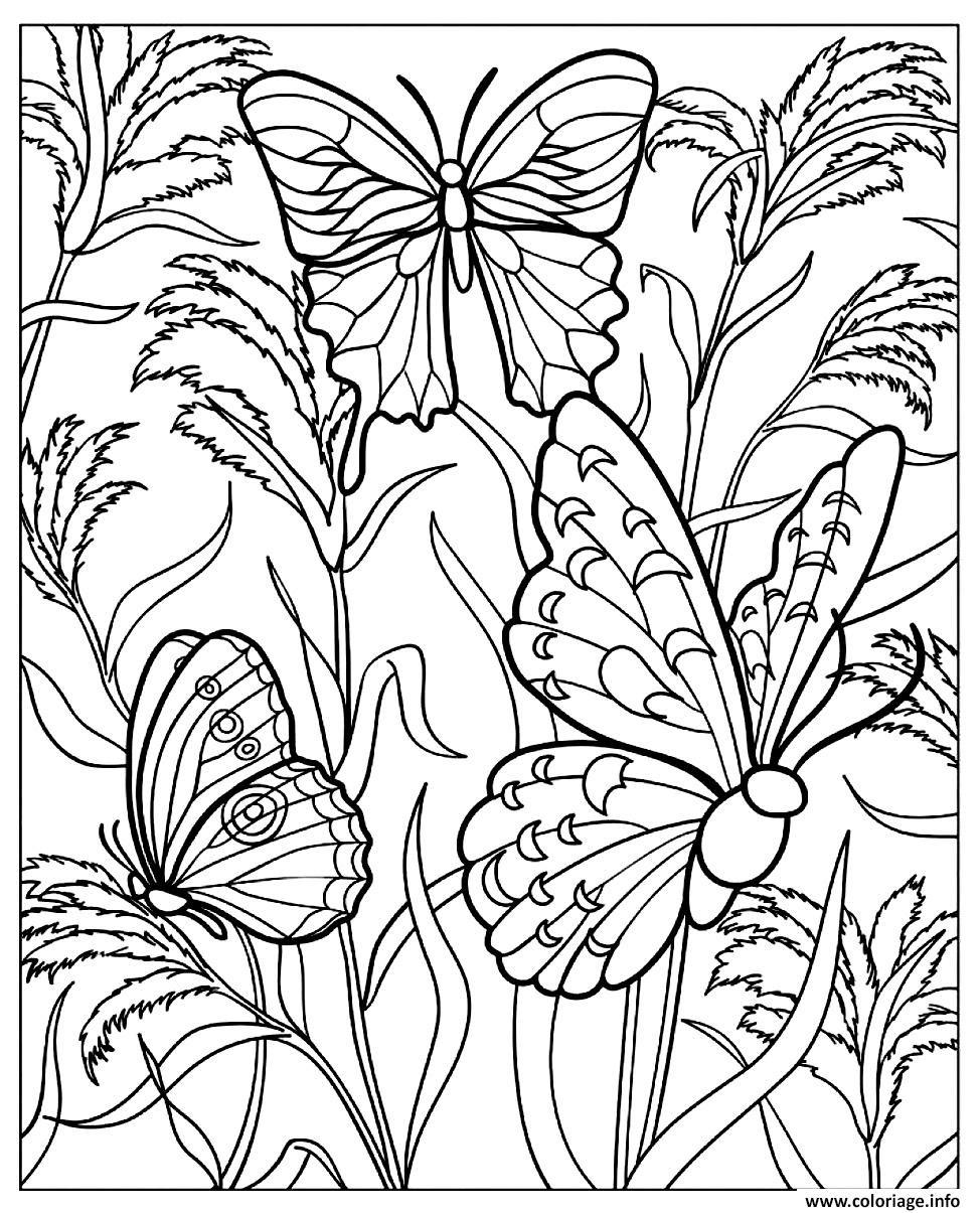 Coloriage Difficile Papillons Dessin  Imprimer