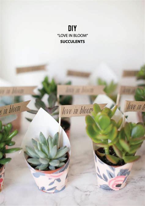 Best 25  Plant wedding favors ideas on Pinterest   Wedding
