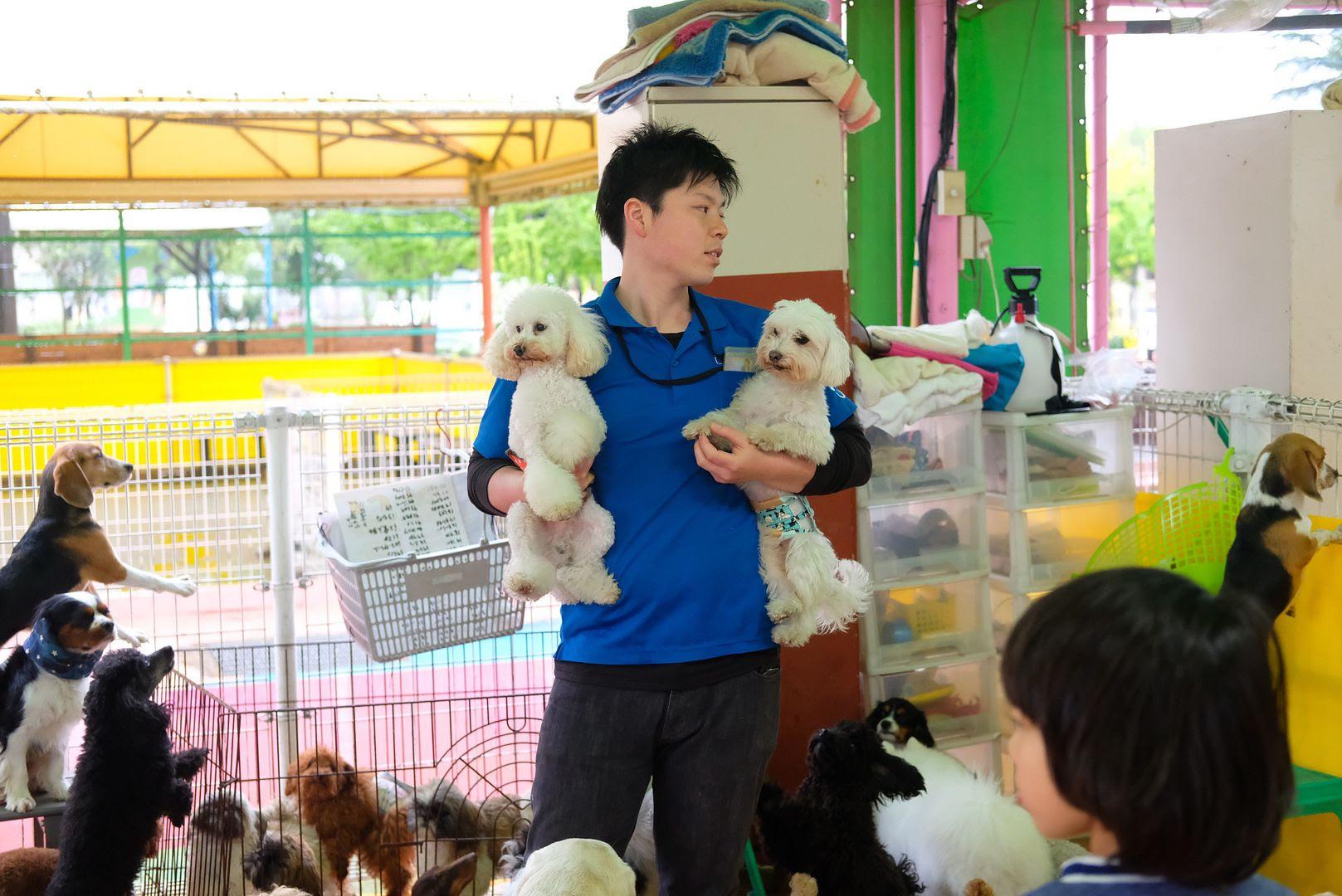 photo Tsukuba Wan Wan Land Ibaraki 1.jpg