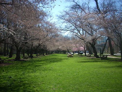 Josephine Gardens A