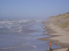 Stranden ved Nr. Lyngby