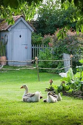 Garden design one les jardins de roquelin val de loire for Le jardin le moulleau