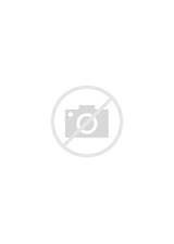 Privacy Policy Privacy Policy For Website Sample