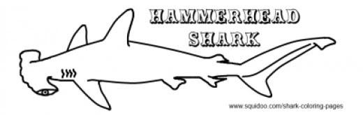 Hammerhead Shark Template - Cliparts.co