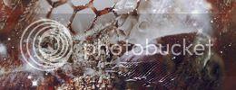 http://i757.photobucket.com/albums/xx217/carllton_grapix/3a.jpg