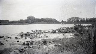 Secret lake 2