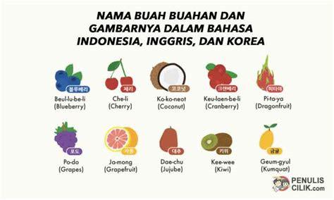 nama buah buahan  gambarnya  bahasa indonesia