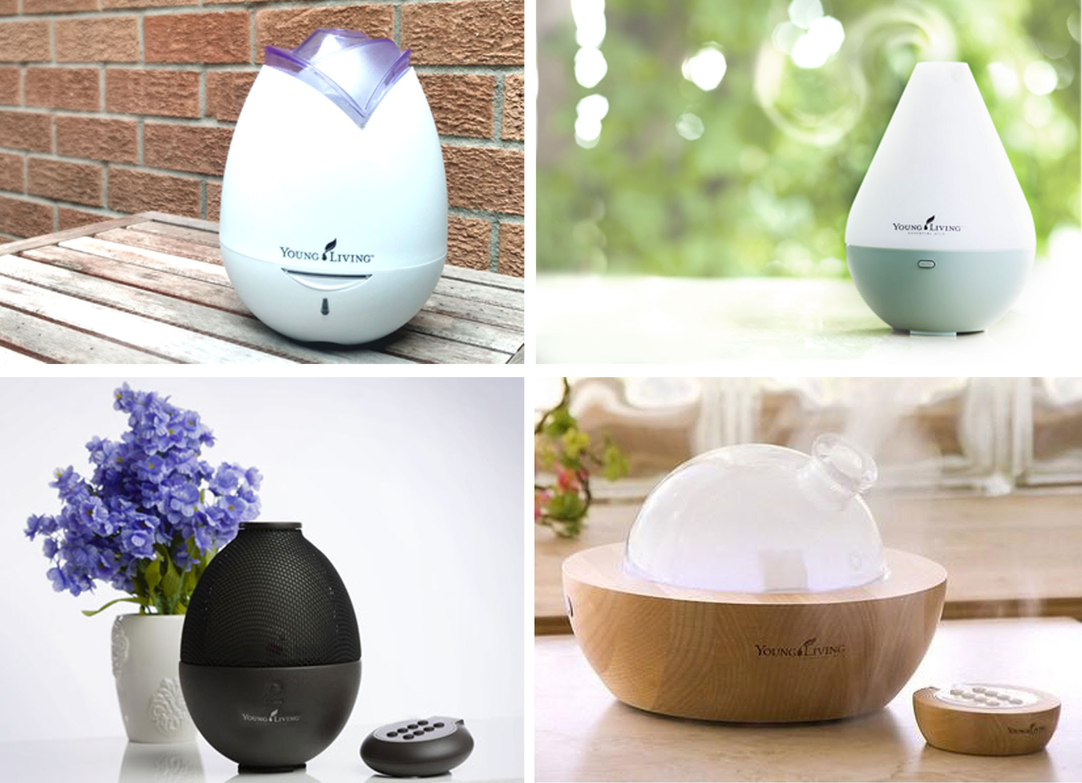 Explore The Diffusers The Spunky Oils